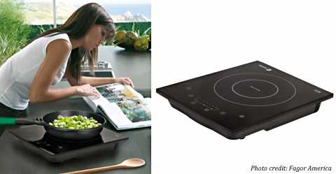 ... Fagor Portable Induction Cooktop ...