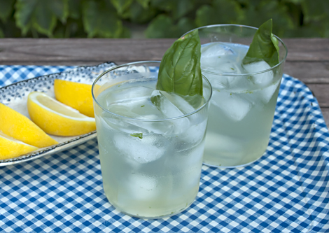 basil lemon gin tonic