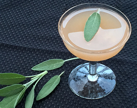 Gin Sage Cocktail