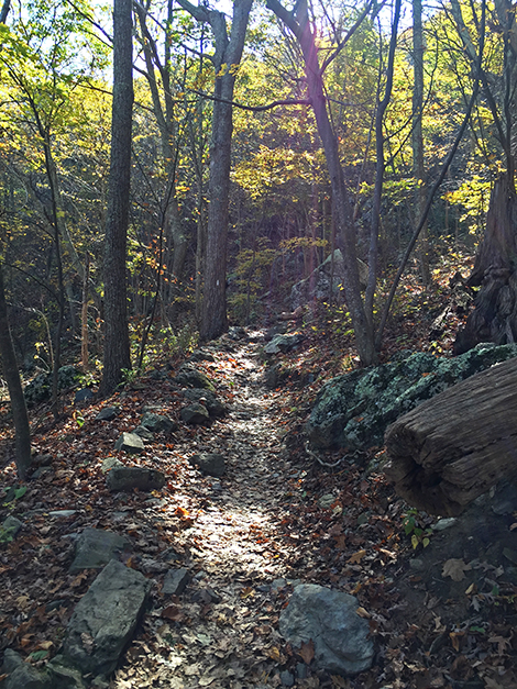 Appalachian Trail, Shenandoah National Park